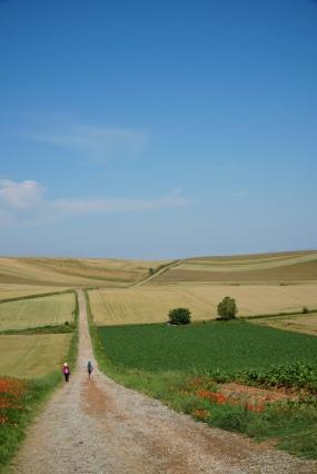 Pilgrim-Paths-2020-2g