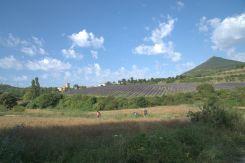 Pilgrim-Paths-Monjardin