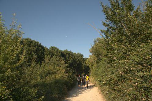 Pilgrim-Paths-Moonwalkers