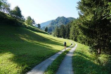 Pilgrim-Paths-Road-Alps